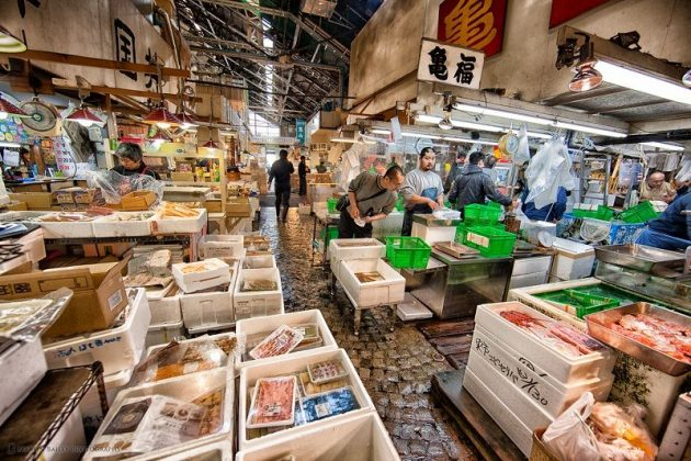 Images Photos For Japan's Fish Market Tsukiji - tsukiji fish market hours Pictures