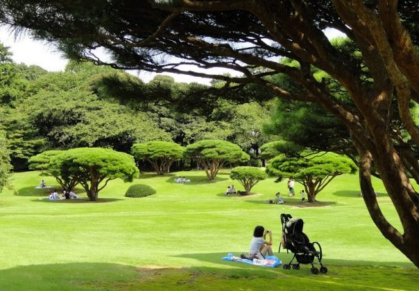 Image Photo of 10 Things You Have To Do In Tokyo - Rst Area Family Zone on Shinjuku Gyoen National Garden Pictures