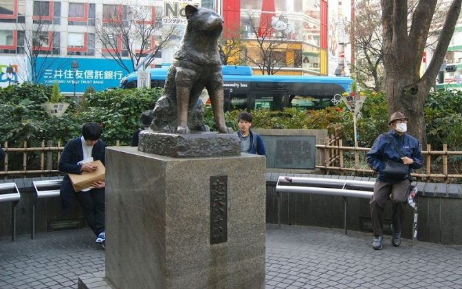 Image Photo of How to Spend 3 Days in Tokyo - Hachiko Statue Shibuya Pictures