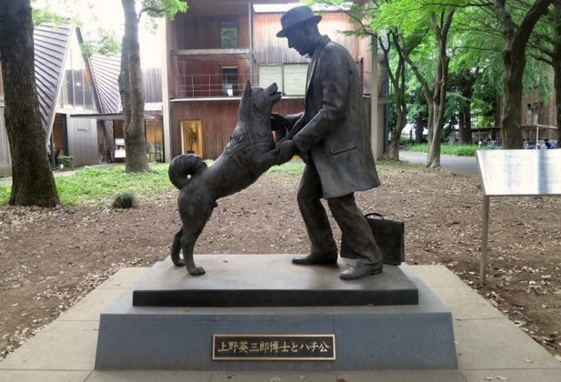 Image Photo of How to Spend 3 Days in Tokyo - Loyal Dog Monument Hachiko Pictures