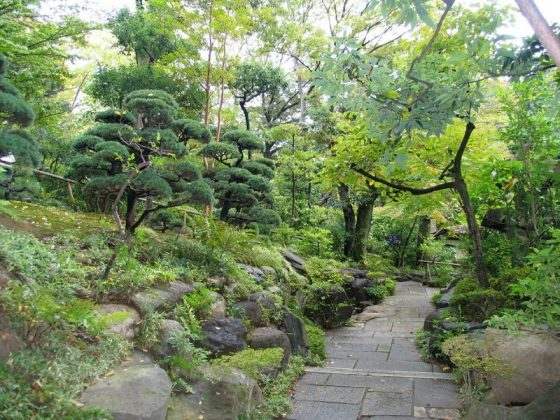Image Picture of What To See In Harajuku - Nezu Museum Garden Photos