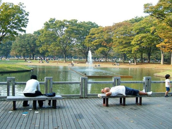 Image Picture of What To See In Harajuku - Resting Area Near Fountain at Yoyogi Park Photos