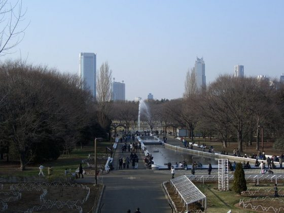 Image Pictue of What To See In Harajuku - Yoyogi Park Tokyo Photos