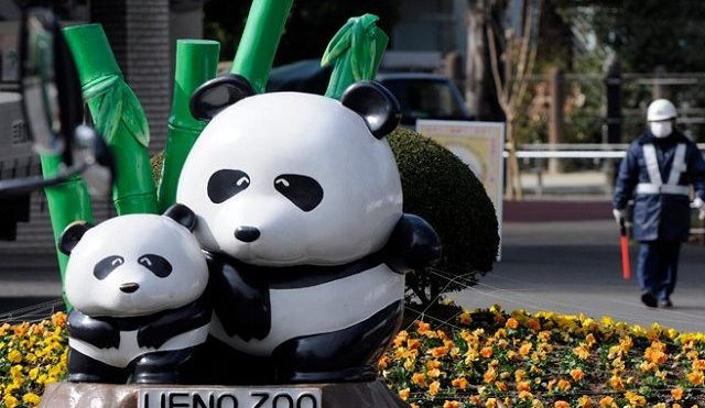 Image of Things to Do In Tokyo with Kids See Panda and More at Ueno Zoo Photos