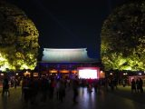 Image of What to Do in Tokyo at Night in Meiji Jingu Shrine Photos