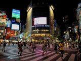 Image ofWhat to Do in Tokyo at Shibuya Photos