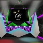 Image Picture for What To Do At Roppongi At Night - Cat's Tokyo Clubnight Photos