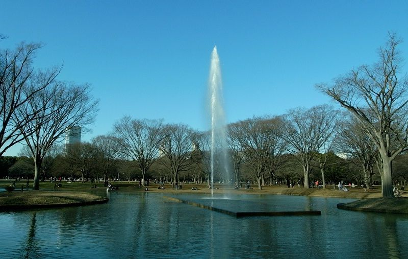 Image Photo of What To See In Harajuku - Fountain at Yoyogi Park Pictures