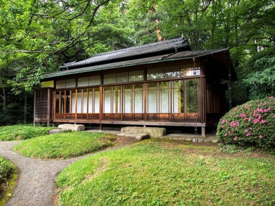 Image Photo of What To See In Harajuku - House Tea at Yoyogi Park Pictures