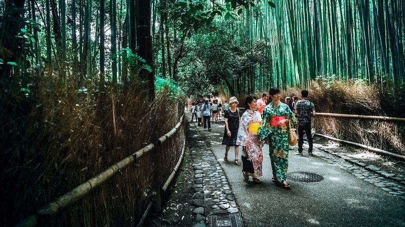Image Photo of which cities to visit in japan arashiyama bamboo grove kyoto Pictures