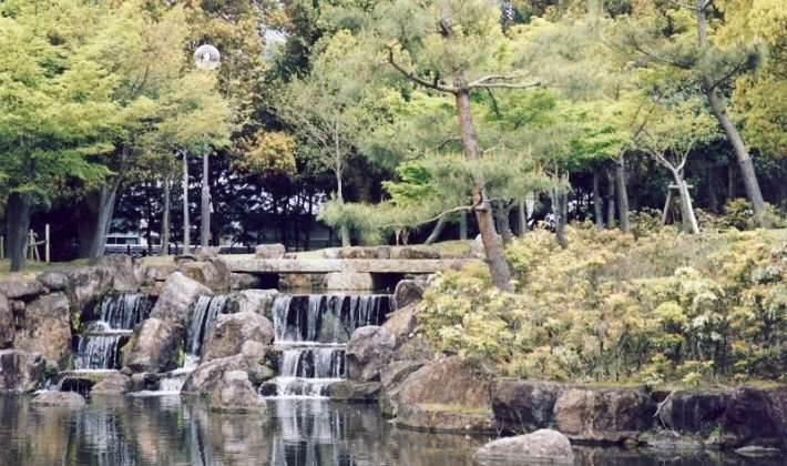 Image Picture of which cities to visit in japan park of nara Photos